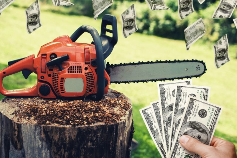 Best Gas Chainsaw for the Money Cover Photo
